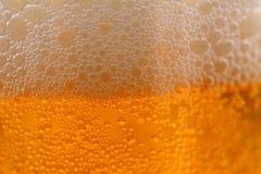 Vidro do macro da cerveja Imagens de Stock Royalty Free