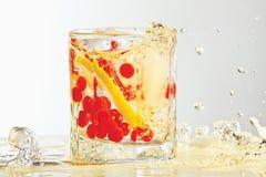 Vidro do rum, do gelo, do limão e da airela com respingo Imagens de Stock