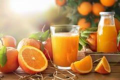 Vidro do suco de laranja em um de madeira no campo Fotografia de Stock