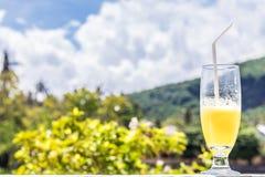 Vidro do suco de laranja no fundo borrado tropical brilhante com palmas, fora Ilha tropical de Bali, Indonésia Foto de Stock Royalty Free