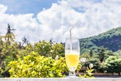 Vidro do suco de laranja no fundo borrado tropical brilhante com palmas, fora Ilha tropical de Bali, Indonésia Fotos de Stock Royalty Free