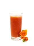 Vidro do suco de tomate Imagens de Stock