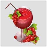 Vidro do suco fresco do corinto vermelho ilustração do vetor