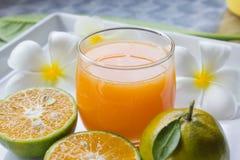 Vidro do sumo de laranja Imagem de Stock