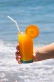 Vidro do sumo de laranja fresco Fotos de Stock Royalty Free