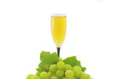 Vidro do vinho branco Foto de Stock Royalty Free