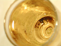 Vidro do vinho branco Imagem de Stock Royalty Free