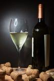 Vidro do vinho branco com frasco imagens de stock royalty free