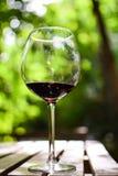 Vidro do vinho do sangue Fotos de Stock