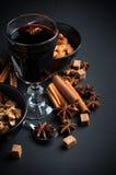 Vidro do vinho ferventado com especiarias quente Fotografia de Stock Royalty Free