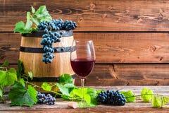 Vidro do vinho tinto e das uvas em uma adega de madeira Foto de Stock Royalty Free