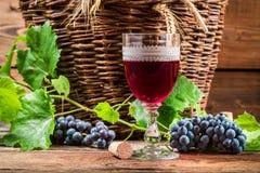 Vidro do vinho tinto na adega Fotografia de Stock