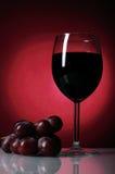 Vidro do vinho vermelho Fotos de Stock Royalty Free