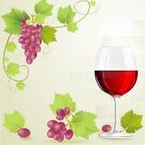 Vidro do vinho vermelho Foto de Stock Royalty Free