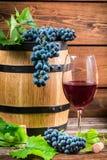 Vidro do vinho vermelho e das uvas Imagem de Stock