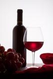 Vidro do vinho vermelho e do frasco com uvas Foto de Stock