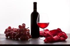 Vidro do vinho vermelho e do frasco com uvas Imagem de Stock