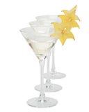 Vidro e carambola de Martini fotos de stock royalty free