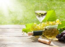 Vidro e garrafa de vinho branco com grupo de uvas Imagens de Stock Royalty Free