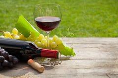 Vidro e garrafa de vinho tinto com grupo de uvas Foto de Stock Royalty Free