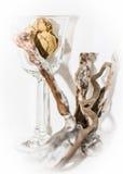 Vidro e madeira Fotografia de Stock Royalty Free