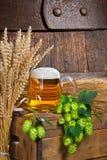 Vidro e matéria prima de cerveja para a produção da cerveja Fotografia de Stock Royalty Free