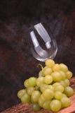 Vidro e uvas de vinho Imagens de Stock