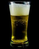 Vidro gelado da cerveja clara Fotografia de Stock