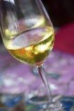 Vidro no vinho Foto de Stock Royalty Free