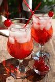 Vidros com cocktail do tequila Imagens de Stock