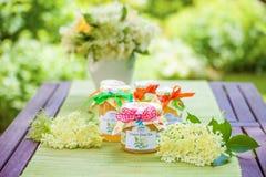 Vidros com geleia da flor do elderflower Imagem de Stock