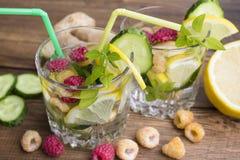 Vidros da água com fruto, gengibre, pepino e manjericão Imagem de Stock Royalty Free
