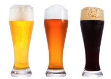 Vidros da cerveja Imagem de Stock