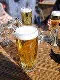 Vidros da cerveja e da água Imagem de Stock