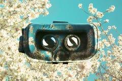 Vidros da realidade virtual, sobrepostos em flores cor-de-rosa das árvores em s Fotografia de Stock Royalty Free