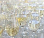 Vidros de Champagne Foto de Stock Royalty Free