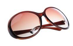 Vidros de sol do marrom da forma das mulheres Fotografia de Stock Royalty Free