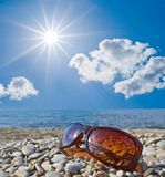 Vidros de Sun em um seashore Imagem de Stock Royalty Free