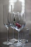Vidros de vinho de vidro Imagem de Stock Royalty Free