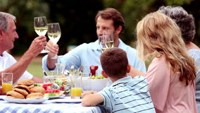 Vidros de vinho do tinido da família video estoque