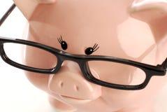 Vidros desgastando do banco Piggy Fotografia de Stock Royalty Free