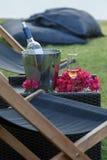 Vidros do vinho com a garrafa de vinho cor-de-rosa com fundo do jardim Fotos de Stock Royalty Free