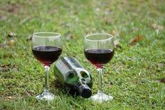 Vidros do vinho vermelho e do frasco Foto de Stock Royalty Free