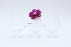 Vidros e orquídea de vidro imagens de stock