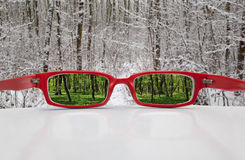 Vidros mágicos Imagem de Stock