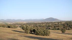 Vidsträckt land med träd och berg stock video
