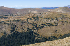 Vidsträckt landskap av den alpina tundran Arkivbilder