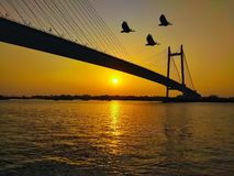 Vidyasagar bridge setu on river Hooghly. Kolkata Prinsep Ghat Sunset click flying birds front of camera. stock photo