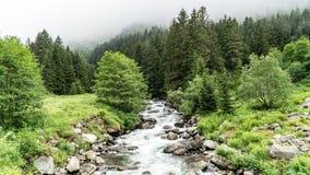Vie à la campagne du nord de nature de rivières de la Turquie Rize Karadeniz la Mer Noire Image libre de droits