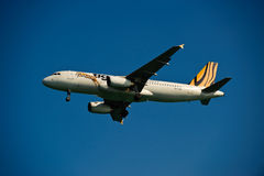Vie aeree A320-232 della tigre sul finale Fotografie Stock Libere da Diritti